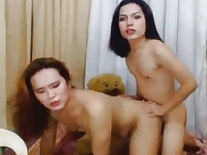 Several Marvelous Asian Shemale Viva voce respect Increased by Ass-fuck Sexual intercourse